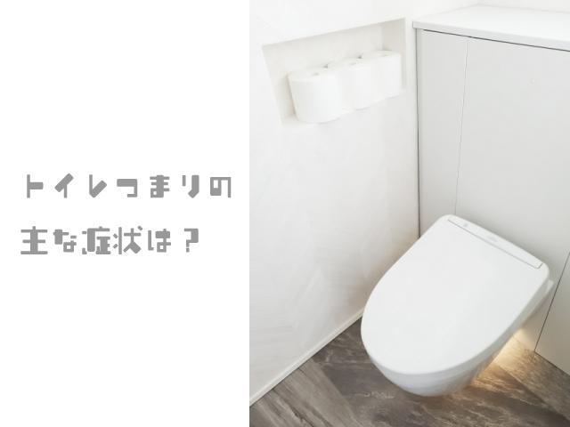 トイレつまりの主な症状は?